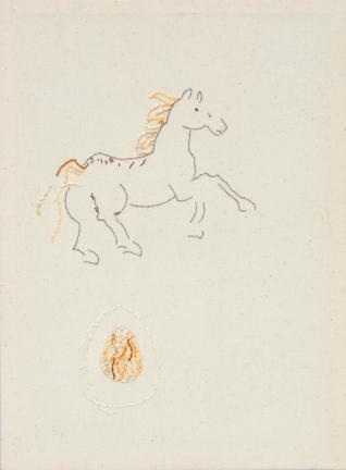 Pferd_IMG_9859